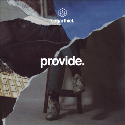 Provide_sleeve art